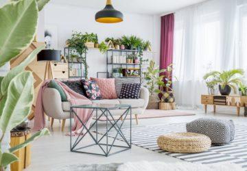 plante apartament