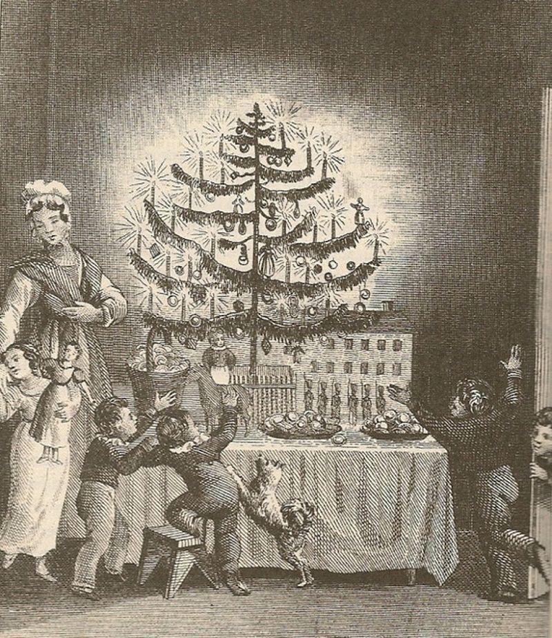 pom craciun 1836