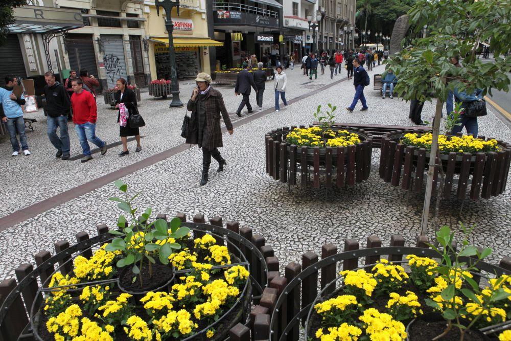 strada florilor